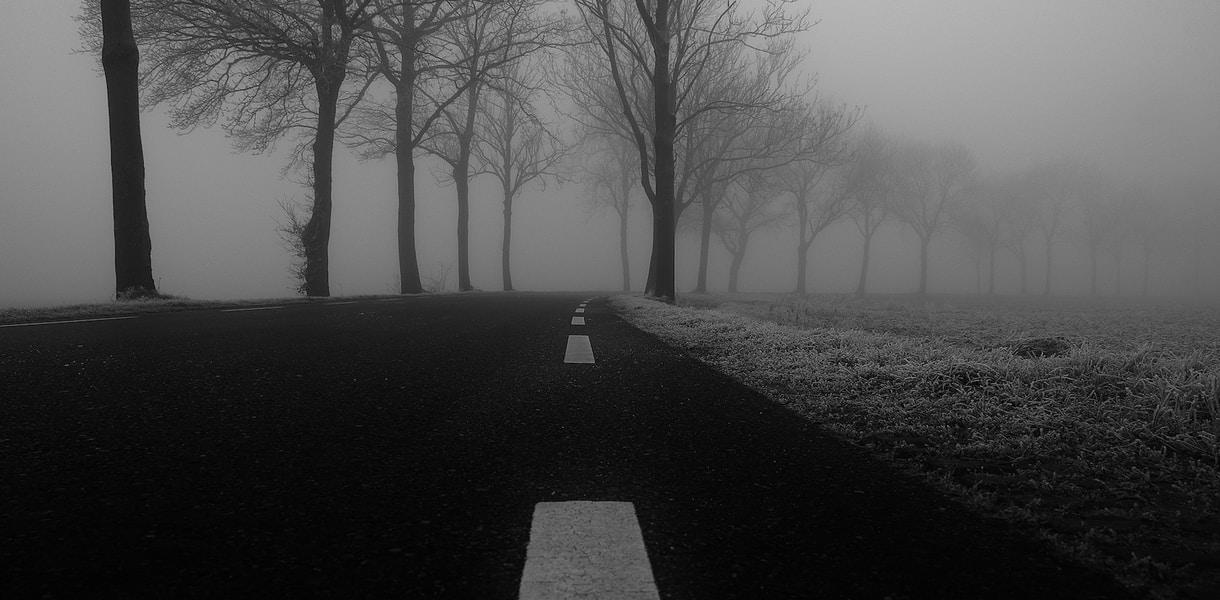 winter-fog-free-license-cc0